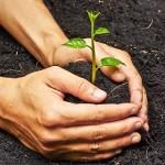 Findeter – financiamento para a reconstrução e a mitigação de mudanças climáticas(ícone)